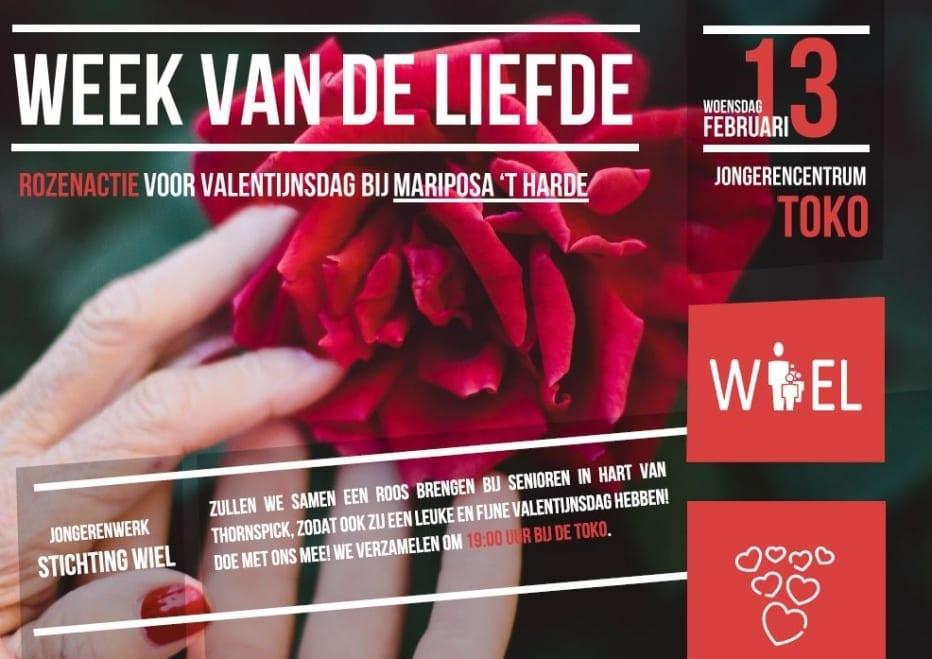 Rozenactie Valentijnsdag - Stichting WIEL